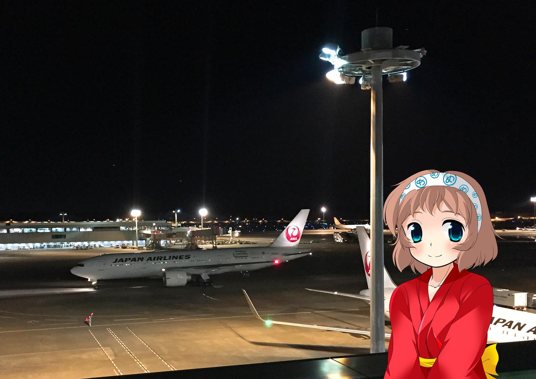 めっとこ 飛行機 空の旅 成田空港 JAL